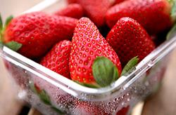 青岛甜宝草莓