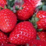 草莓好吃,请不要浪费
