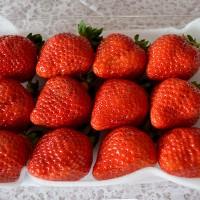草莓的繁殖方法有哪些各有什么特点?