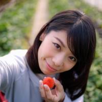 甜宝草莓无土栽培模式
