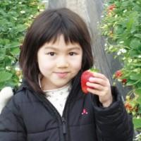 青岛郝家草莓采摘园告诉你草莓挑选的诀窍